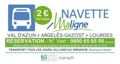 NAVETTE VAL D'AZUN > ARGELÈS-GAZOST > LOURDES